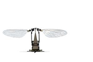 robo-bee-1